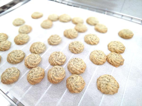 紅茶の絞りクッキー